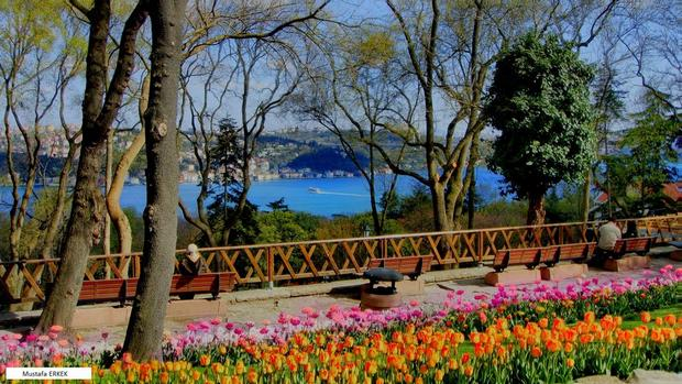 حديقة اميرجان في اسطنبول حدائق في اسطنبول