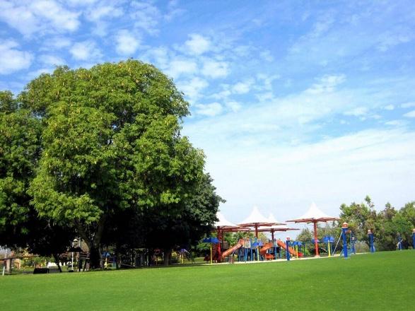 حديقة خور دبي
