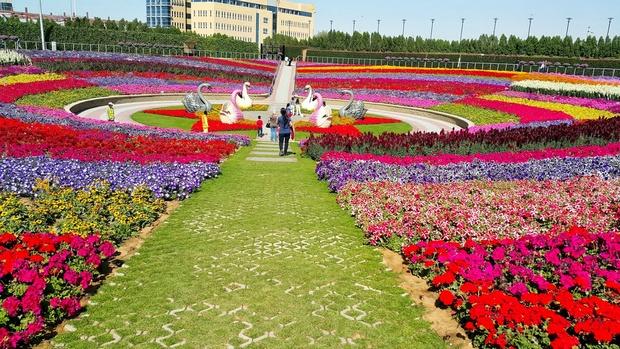 حديقة دبي المعجزة