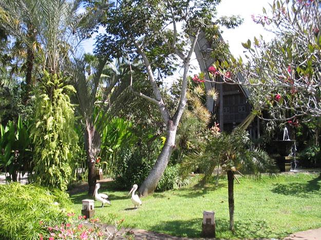 حديقة الطيور كوالالمبور - افضل الاماكن في كوالالمبور