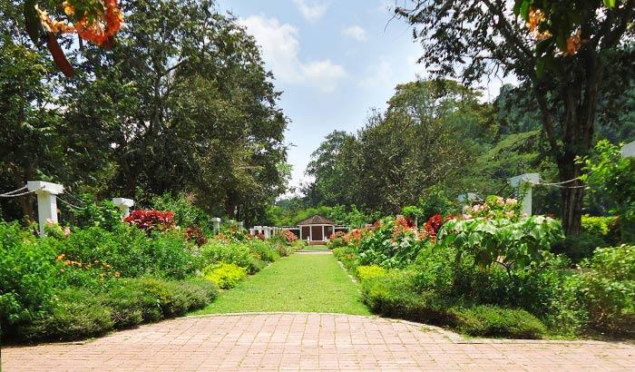 حدائق بينانج النباتية - افضل اماكن سياحية في بينانج