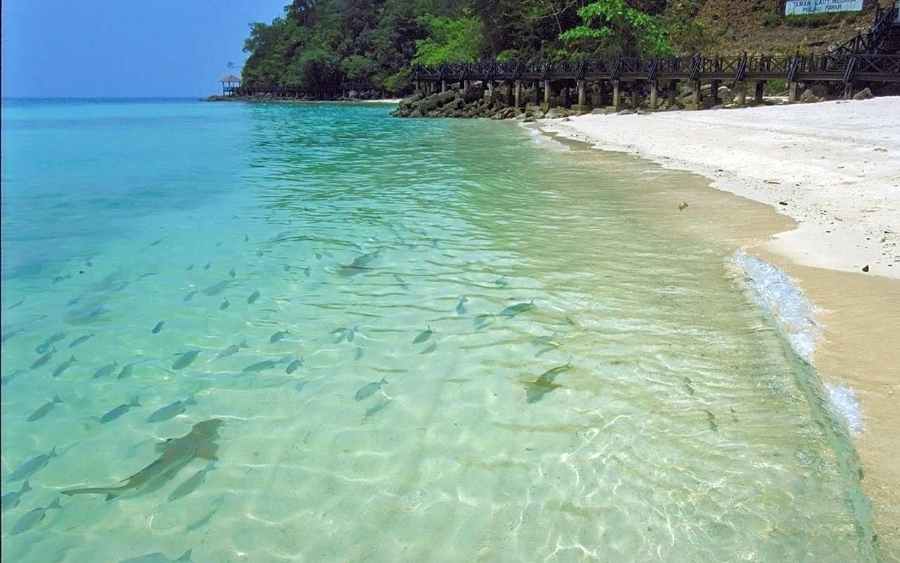 جزيرة بايار في لنكاوي - اماكن سياحية في لنكاوي