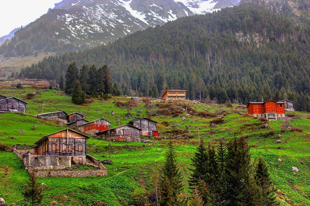 قرية شات