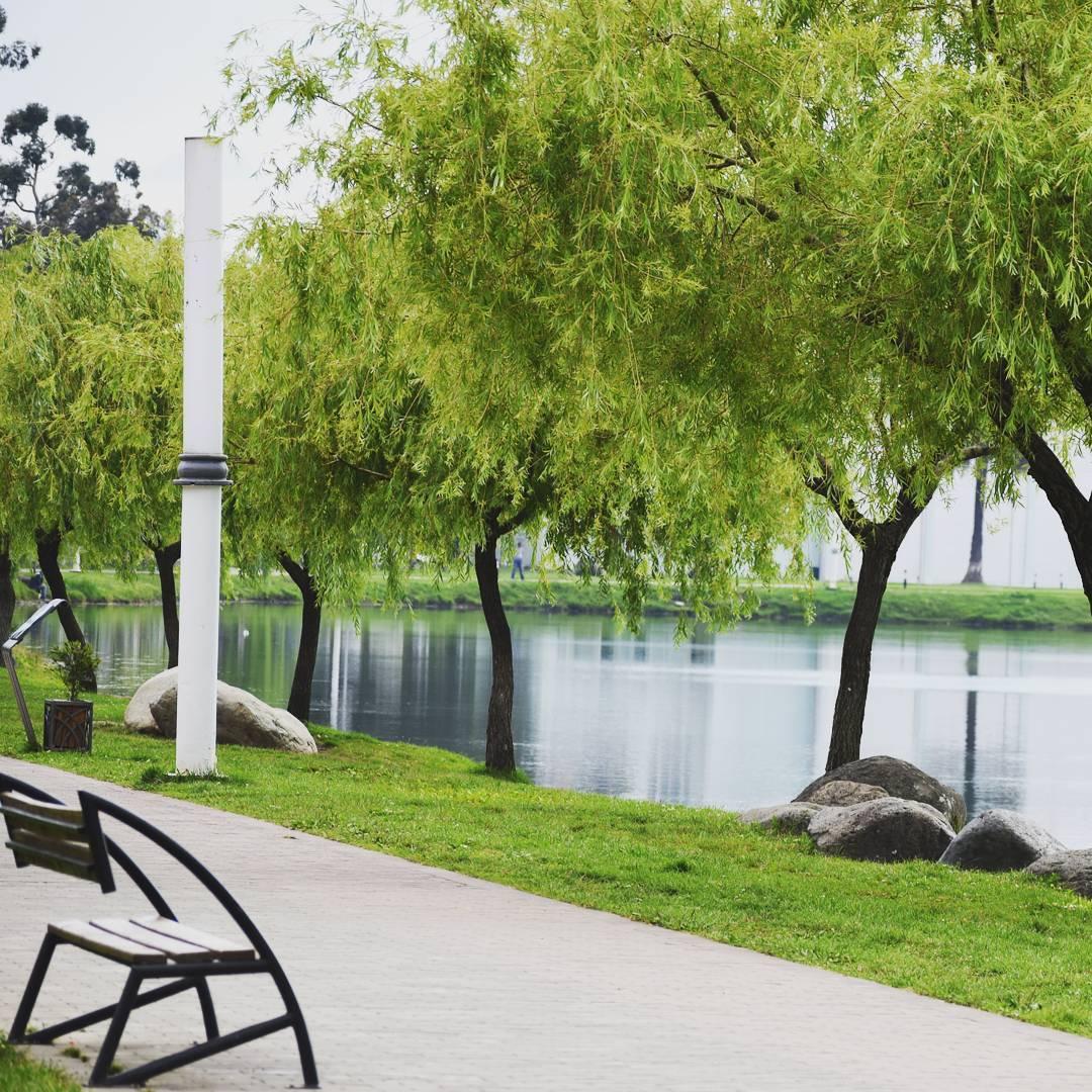حديقة 6 مايو في باتومي - افضل المناطق السياحية في باتومي