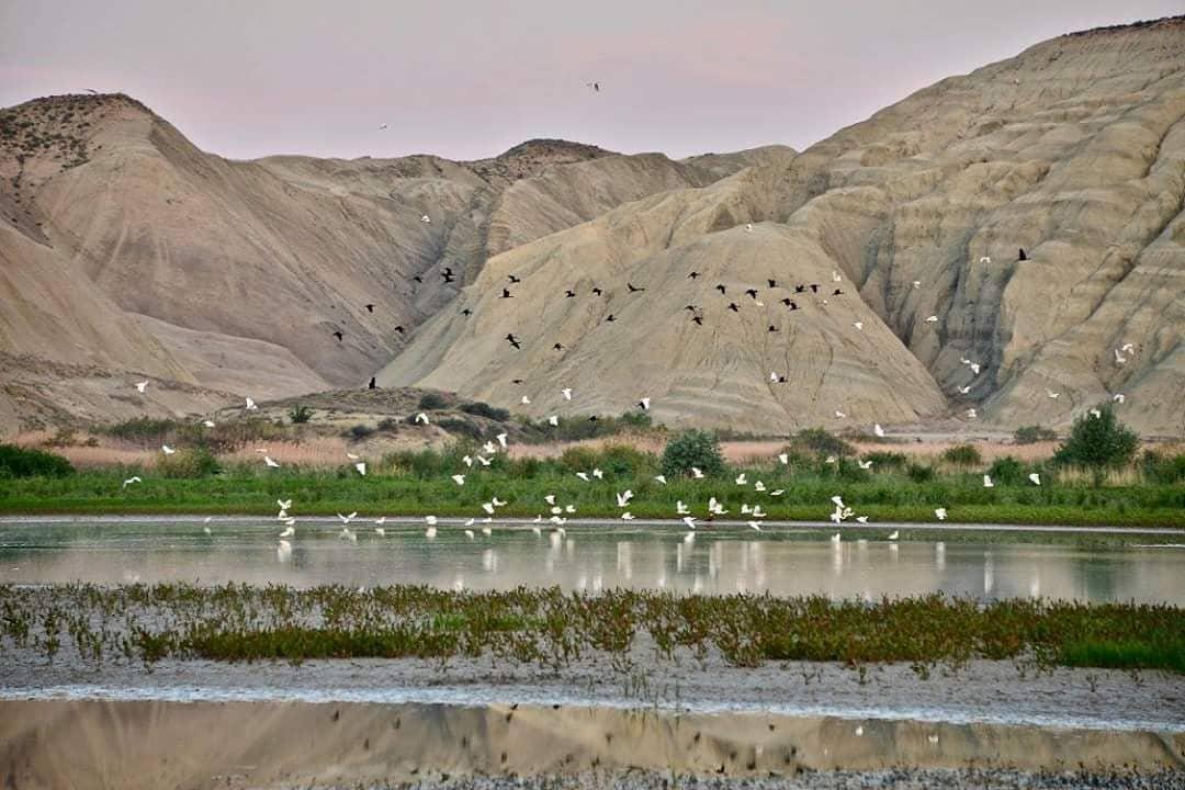 بحيرة كوش جنات بورصة - بحيرات بورصه