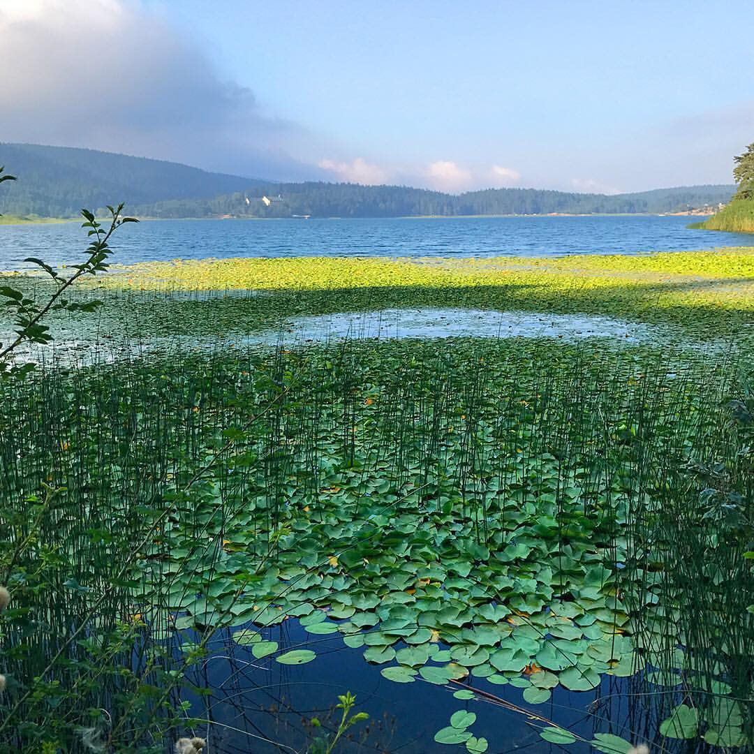 بحيرة ابانت بولو