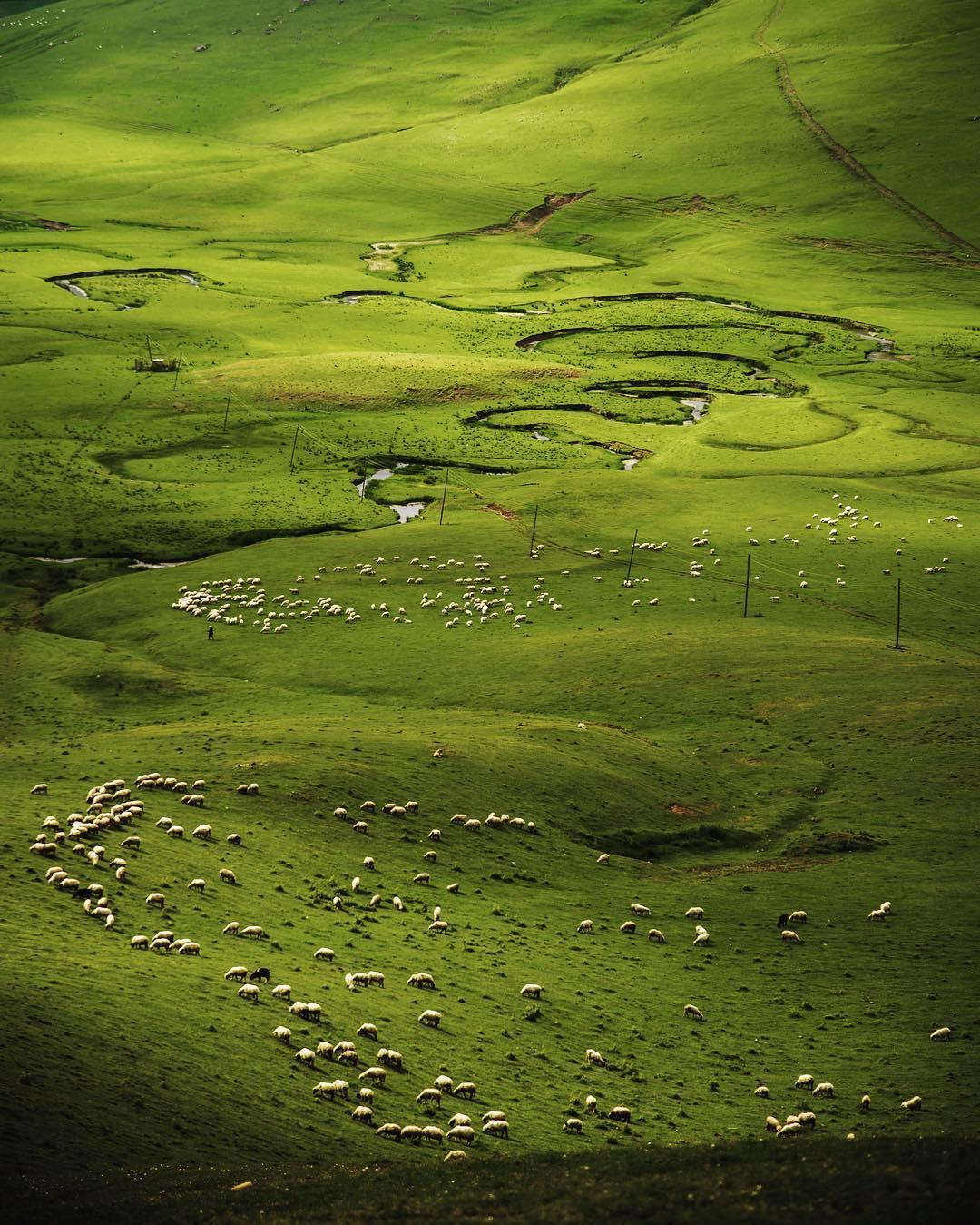 مرتفعات بارشميا اوردو