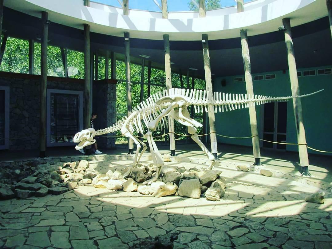 محمية ستابليا كوتايسي - الاماكن السياحية في كوتايسي