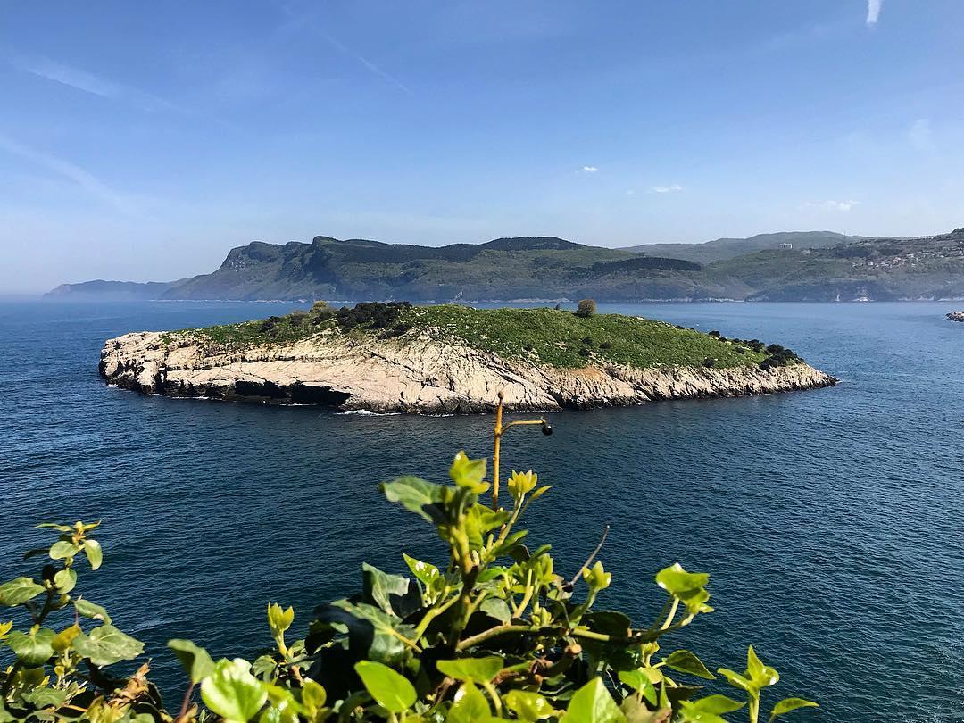 جزيرة تافشان