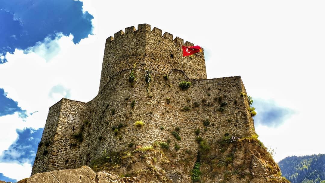 قلعة زيل