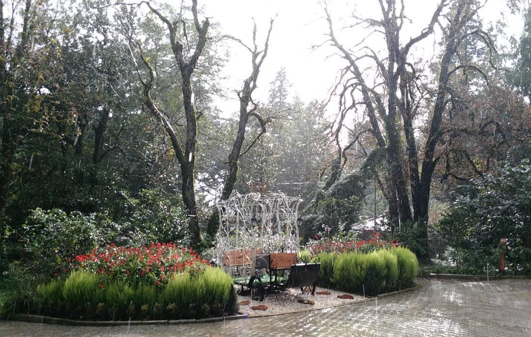 الحديقة النباتية في كوتايسي - الاماكن السياحية في كوتايسي