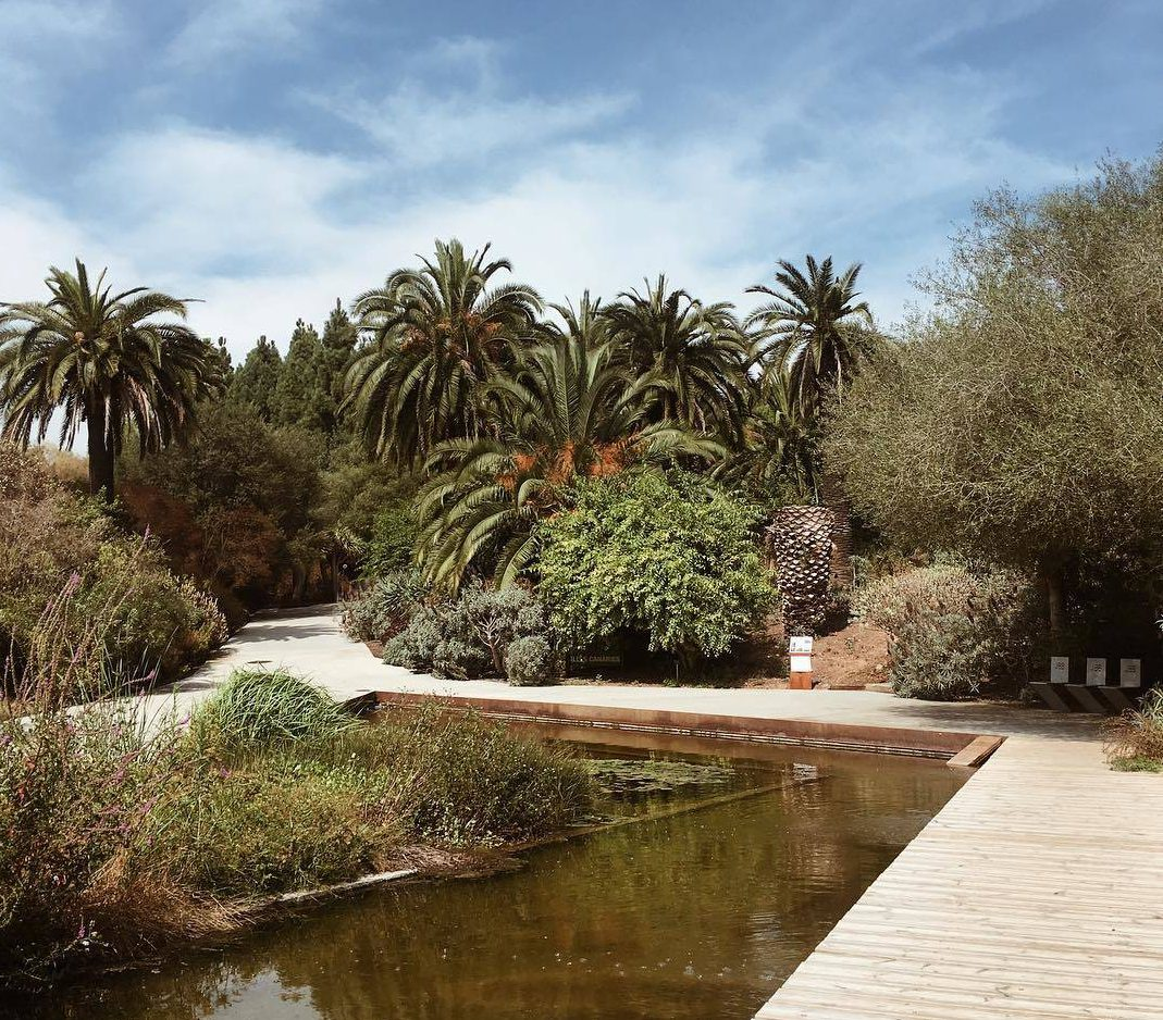 حديقة برشلونة النباتية - السياحة في برشلونة