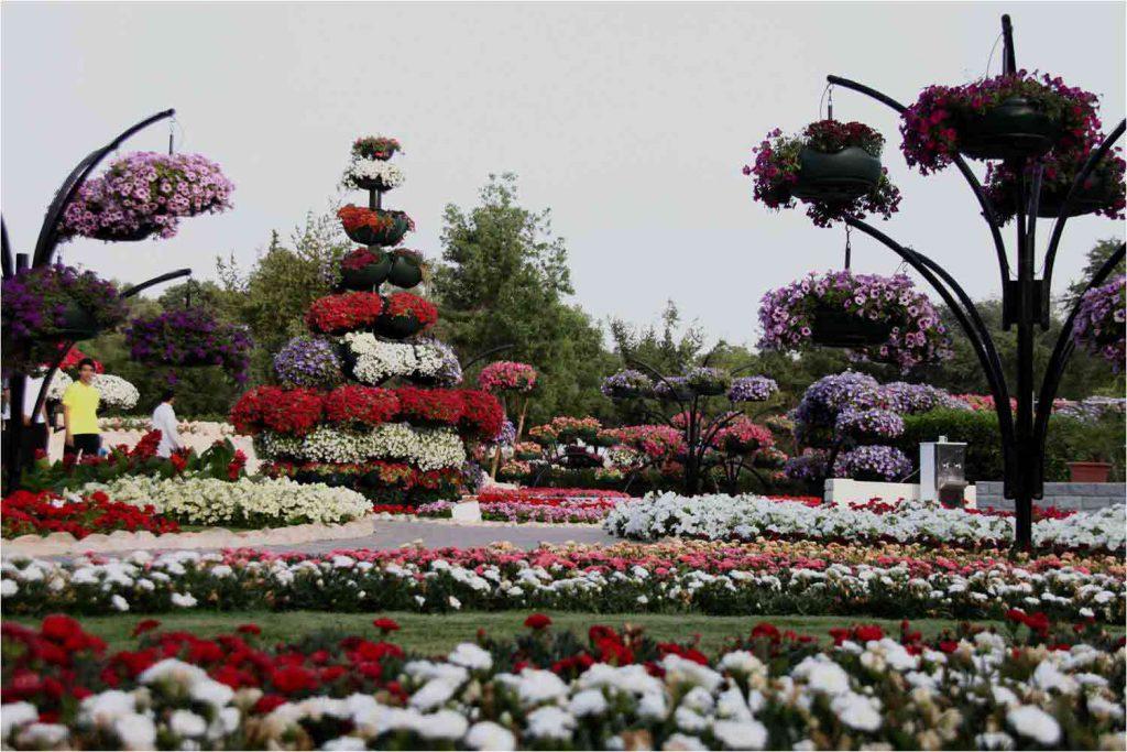 حديقة العين برادايس في ابوظبي