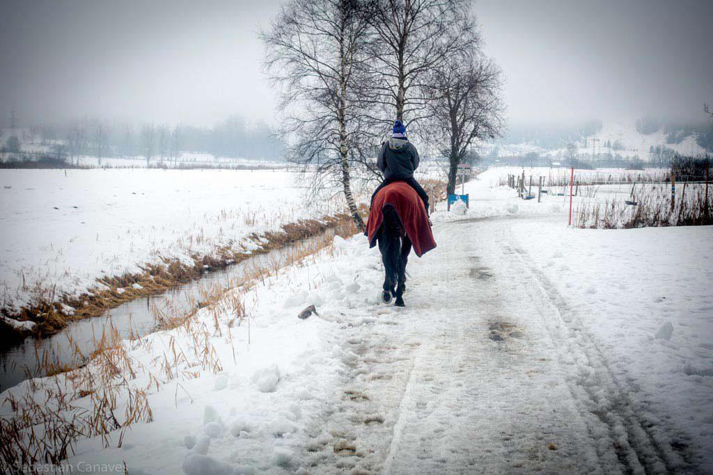 زيلامسي في الشتاء