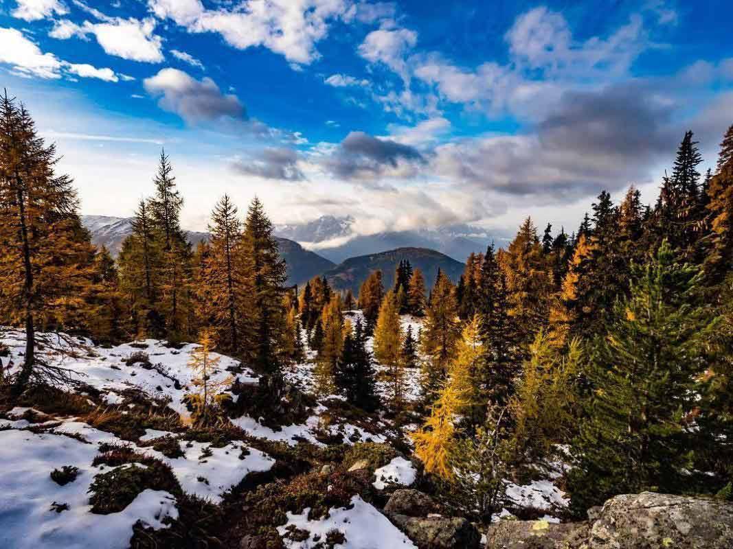 زيلامسي النمسا في الشتاء