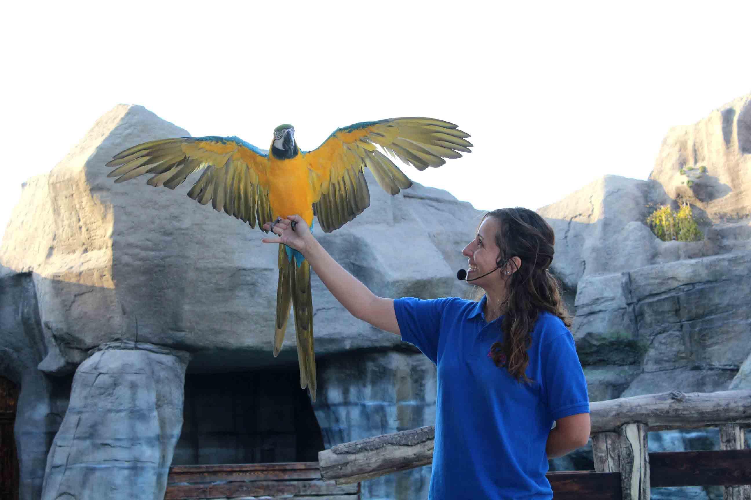 حديقة حيوانات الامارات