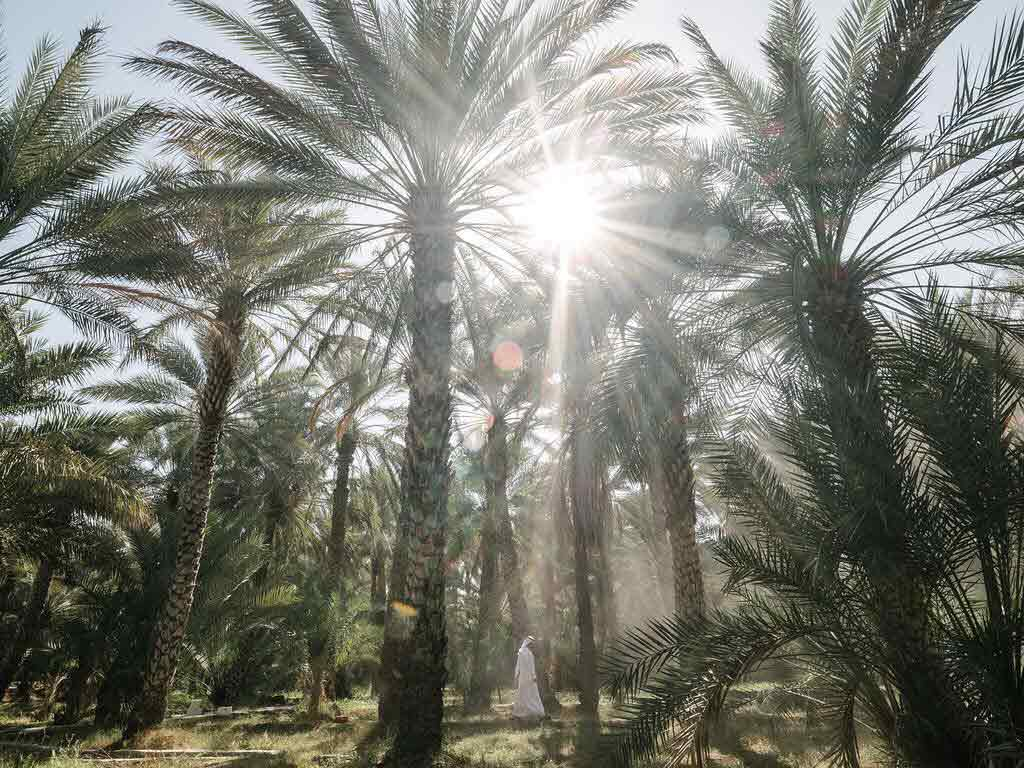 اماكن سياحيه في ابو ظبي