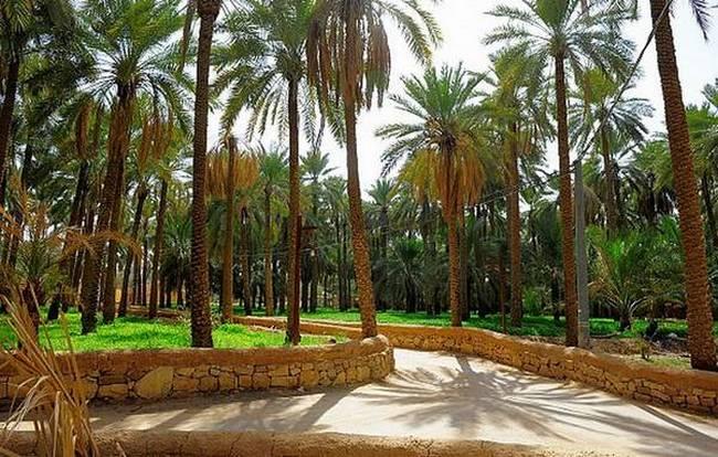 اماكن سياحية في الرياض للعوائل